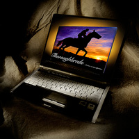 Thoroughbred-ebook-Laptop-LOGOjpg